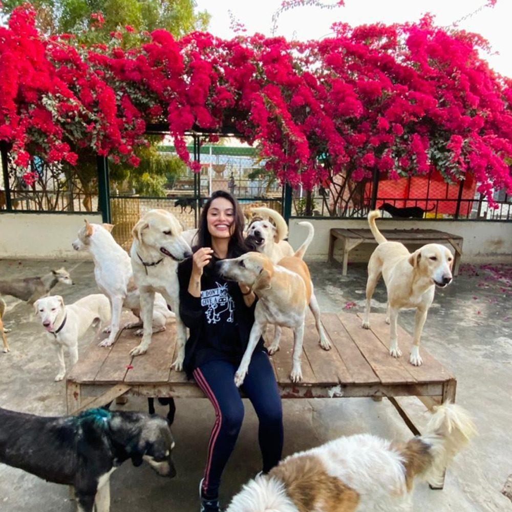 Ayesha Chundrigar Animal Care Course